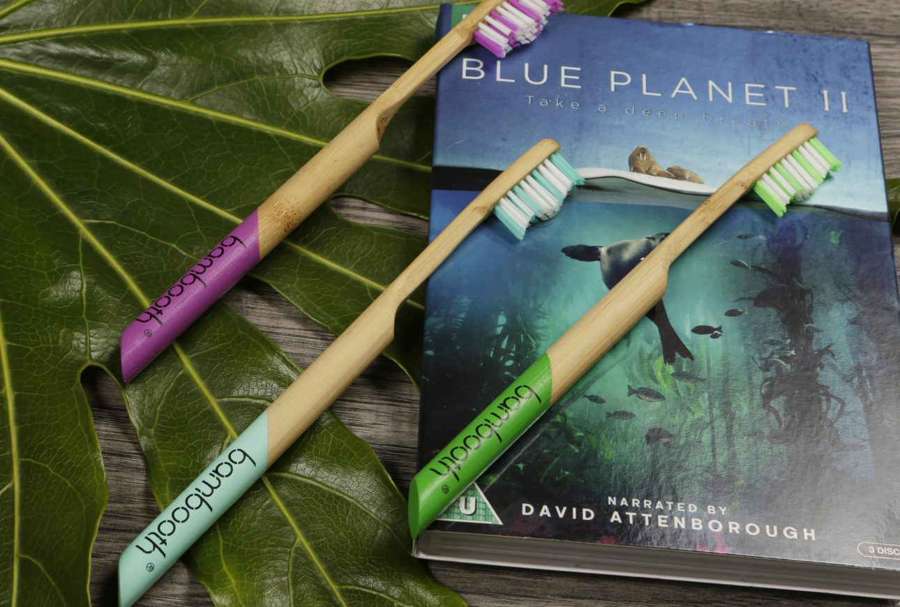 environmentally friendly bamboo toothbrush