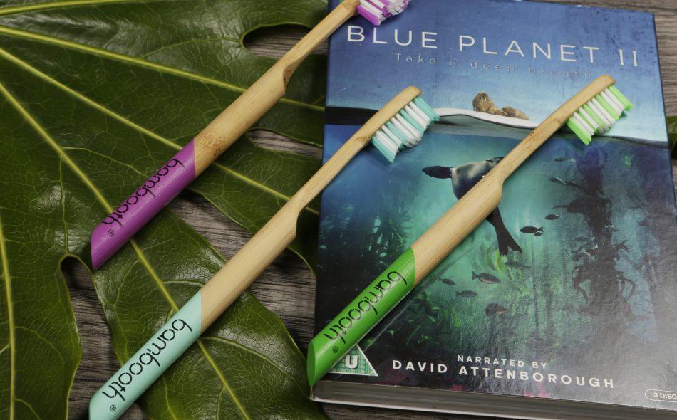 environmentally friendly bamboo toothbrush
